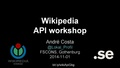 API-workshop Gbg (eng).pdf