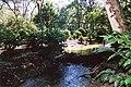 ARROLLO CHAPINLAJ - panoramio.jpg