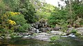 A Pobra do Caramiñal río Pedras 13.jpg
