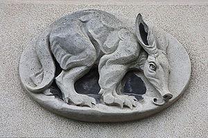 Phyllis Bone - Aardvark by Phyllis Bone