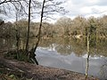 Abbrook Pond - geograph.org.uk - 1750233.jpg