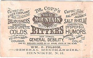 Bitters - This 1883 advertisement promised help with a variety of ailments.