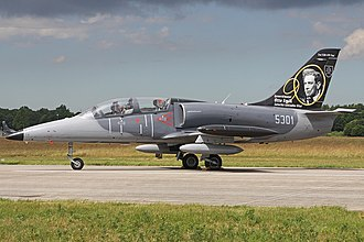 Slovak Air Force - Slovak Air Force L-39CM with special Otto Smik paint