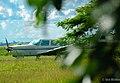 Airplane (44696826).jpeg