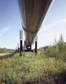 Alaska pipeline LCCN2011631229.tif