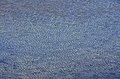 Albeck Seebachern Torersee Wasseroberflaeche 01112013 207.jpg