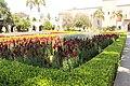 Alcazar Garden - Balboa Park 2.JPG