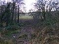 Alder Coppice Path - geograph.org.uk - 1082772.jpg