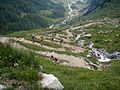 Alpine Peace Crossing 28.JPG