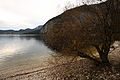 Altausseer See ost 79005 2014-11-15.JPG