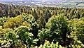 Am Bilstein bei Breungeshain und Busenborn - Aussicht vom Bilstein.jpg