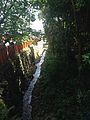 Amanogawa River in front of Shokujo Shrine in Munakata Grand Shrine (Nakatsu Shrine) 2.jpg