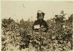 Annie Bissie, a little picker in the fields near B-alti-more.jpg