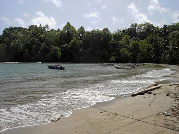 Anse Du Me (Dominica).jpg