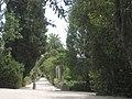 Arboretum Trsteno-3.JPG