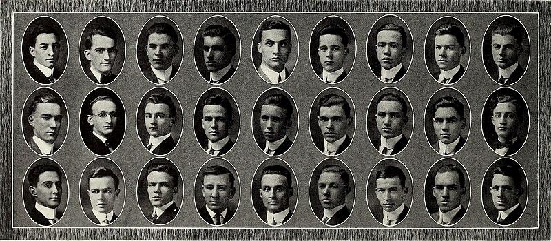File:Arbutus (1910) (14594984219).jpg