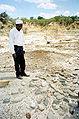Arch-tanzania-kmf.jpg