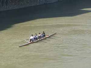 Arno-Rowing.JPG