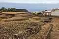 At Tenerife 2020 475.jpg