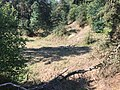 Aufgelassene Sandentnahme mit Trockenrasen 4003.jpg