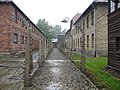 Auschwitz II-Birkenau 3.jpg