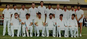 History of the Australian cricket team - 1988 team