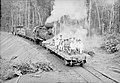 Autoridades em Visita ao Trecho Concluído da Ferrovia Madeira-Mamoré - 582, Acervo do Museu Paulista da USP (cropped).jpg