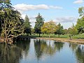 Autumn Reflections in Mount Pond, Clapham Common - geograph.org.uk - 1552850.jpg