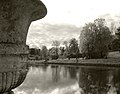 Autumn vase and river Pavlovsk bw.jpg