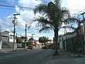 Avenida Guapira, alt., 872 - panoramio.jpg