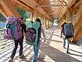 Avisio bridge to Alpe Cermis (4963207790).jpg