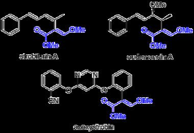 Azoxystrobin - Wikipedia