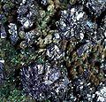 Azurite-Malachite-257261.jpg