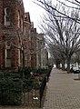 BHrowhouses.jpg