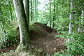 BL - Bodman - Hofgut Bodenwald - Wallburg 05 ies.jpg