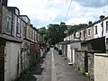 Back Alley - geograph.org.uk - 499482.jpg