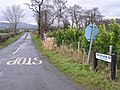 Backfarm Road - geograph.org.uk - 1140070.jpg