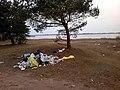 Baltiyskiy rayon, Konigsberg, Kaliningradskaya oblast', Russia - panoramio (43).jpg