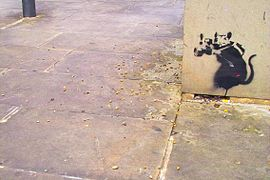 Banksy - Rat Photographer.jpg