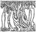 Banyan tree (PSF).png