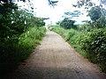 Barangay road in Quezon, Isabela.jpg