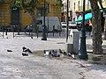 Bastia - Place de l'Hotel de Ville - doves cooling down - panoramio.jpg