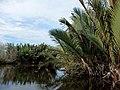 Beaufort, Sabah, Malaysia - panoramio (22).jpg