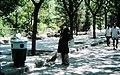 Beihai Park Street Sweeper (10553491254).jpg