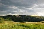 Vuoristo niitty bighornin kansallismetsässä.