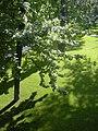 Biraz huzur...biraz sükunet - Flickr - elif ayse.jpg