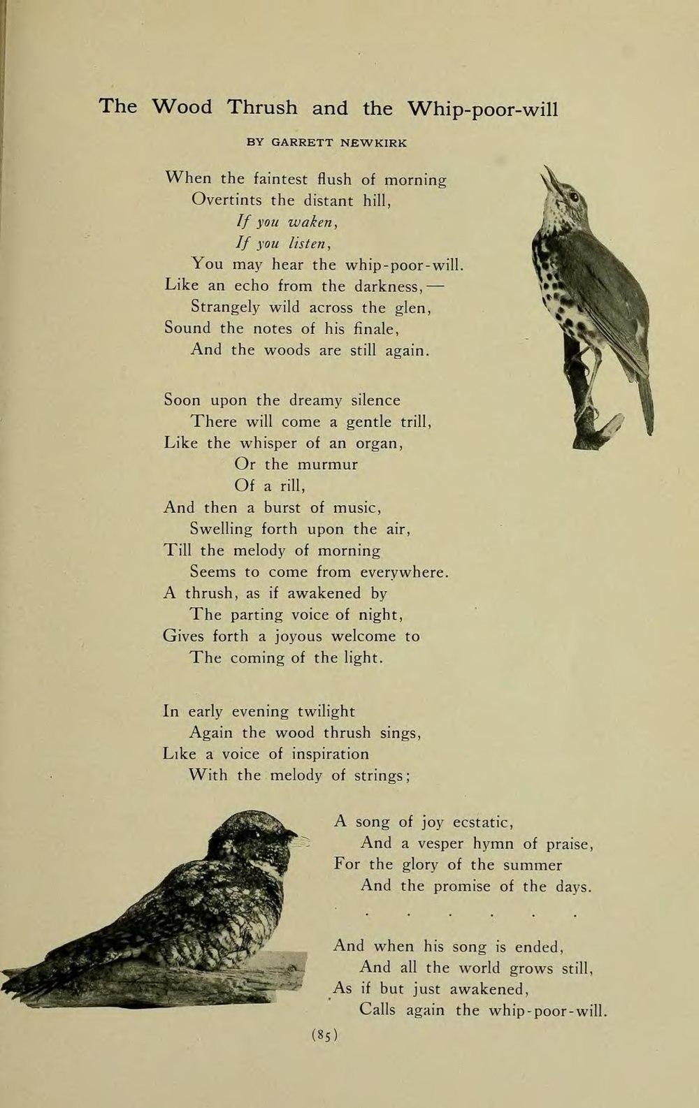 Page:Bird-lore Vol 04 djvu/106 - Wikisource, the free online