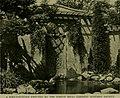 Bird lore (1916) (14732477206).jpg