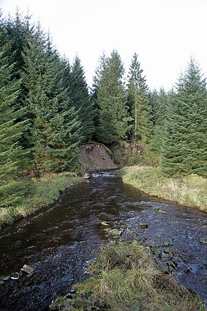River Lyne - The Black Lyne in Kershope Forest