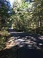 Blendon Woods Metro Park October 2018 20.jpg